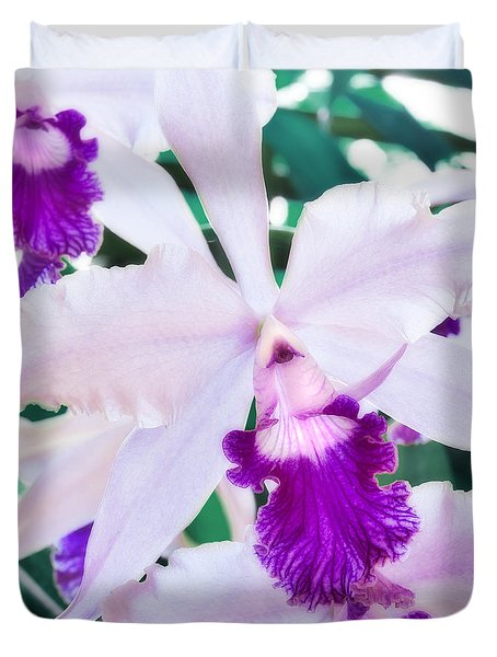 Orchids White And Purple Duvet Cover by Steven Sparks