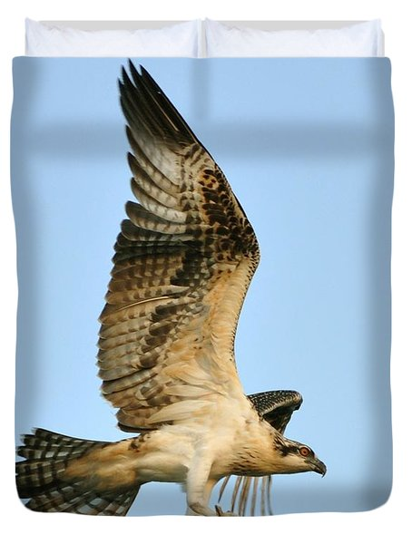 Duvet Cover featuring the photograph Osprey After Flight by Rick Frost