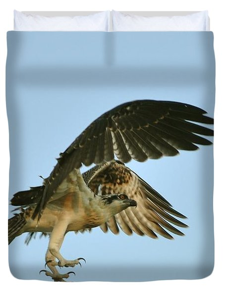 Duvet Cover featuring the photograph Osprey In Flight by Rick Frost