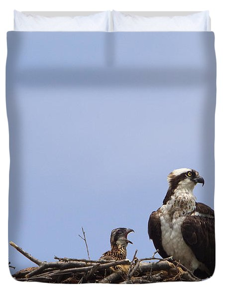Osprey Mother And Chick Duvet Cover