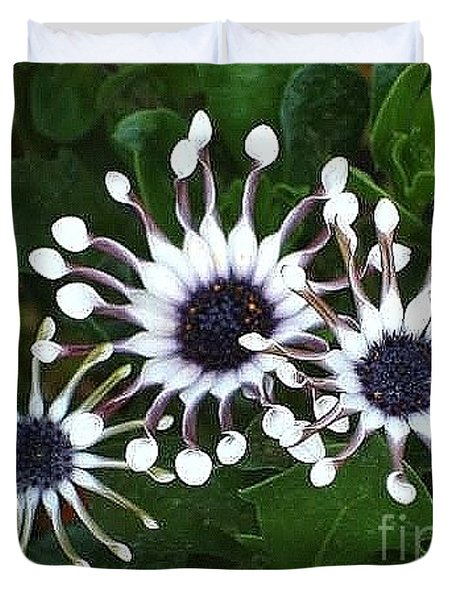 Duvet Cover featuring the photograph Osteospermum by Katy Mei