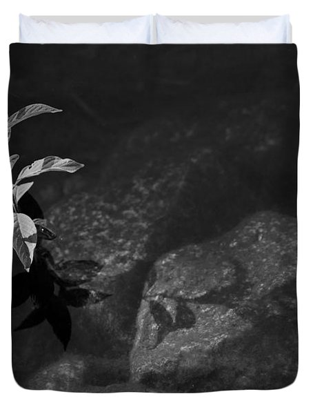 Out Of The Water Comes Shadows Bw Duvet Cover by Karol Livote