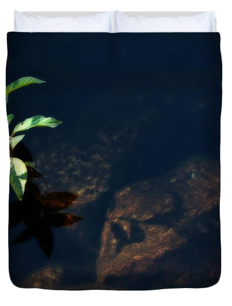 Out Of The Water Comes Shadows Duvet Cover by Karol Livote