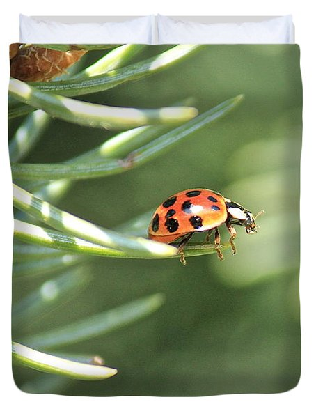 Duvet Cover featuring the photograph Out On A Limb by Penny Meyers