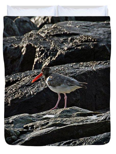 Oyster On The Rocks Duvet Cover