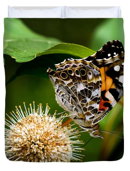 Painted Lady On Button Bush Duvet Cover by Travis Burgess