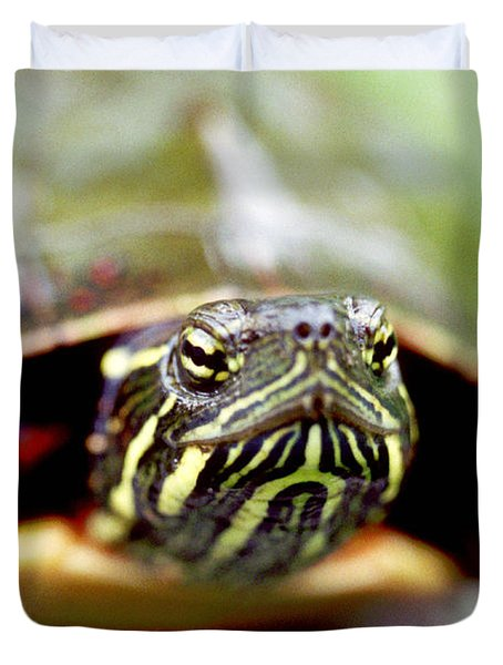 Painted Turtle Duvet Cover