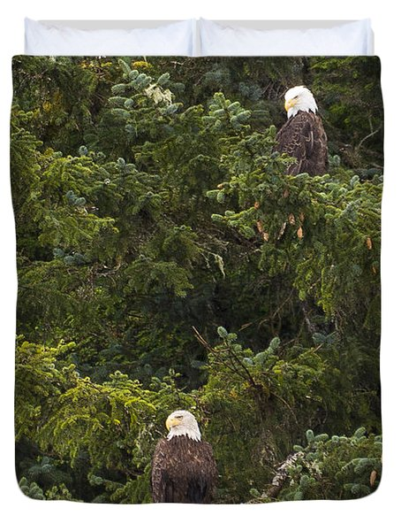 Pair Of Bald Eagles Duvet Cover by Darcy Michaelchuk