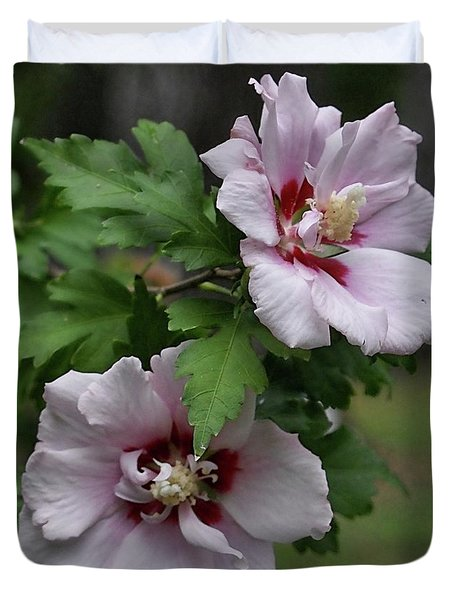 Duvet Cover featuring the photograph Pair Of Rose Of Sharon by Rick Friedle