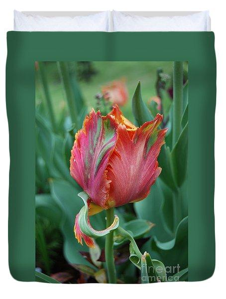 Duvet Cover featuring the photograph Parrot Tulip Flower by Eva Kaufman