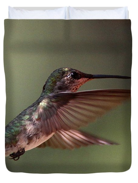 Partial Shade For The Ruby- Throated Hummingbird Duvet Cover by Travis Truelove