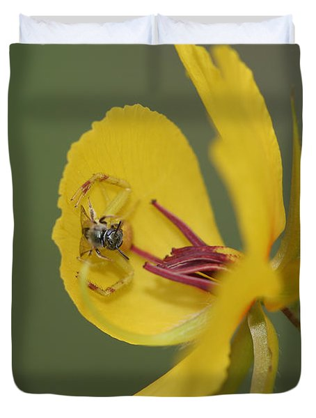 Partridge Pea And Matching Crab Spider With Prey Duvet Cover