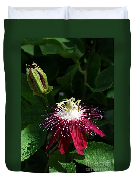 Passion Flower Duvet Cover by Eva Kaufman