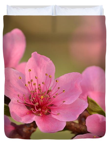 Peach Beautiful Duvet Cover