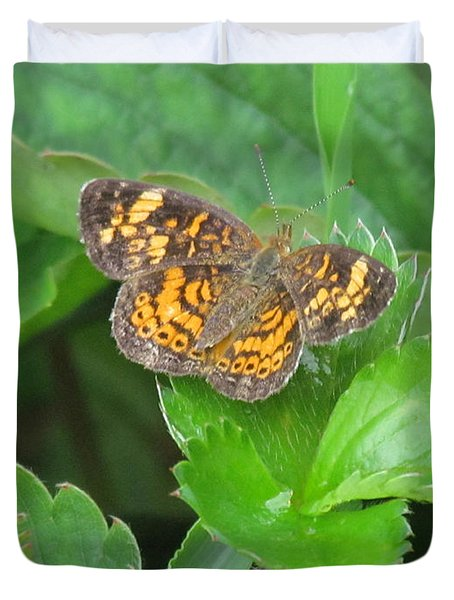 Pearl Crescent Butterfly Duvet Cover by Randi Shenkman