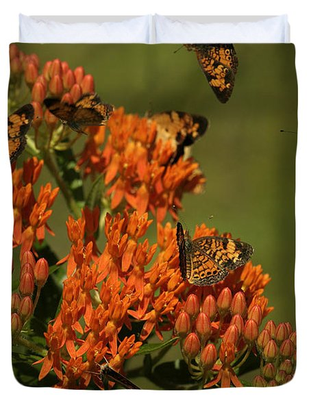Duvet Cover featuring the photograph Pearly Crescentpot Butterflies Landing On Butterfly Milkweed by Daniel Reed