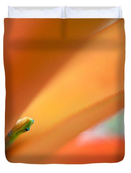 Peek Duvet Cover by Mike Reid
