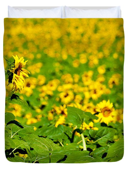 Duvet Cover featuring the photograph Peeking Above  Sea Of Yellow by Colleen Coccia