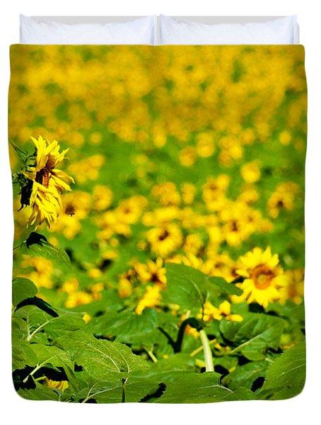 Peeking Above  Sea Of Yellow Duvet Cover