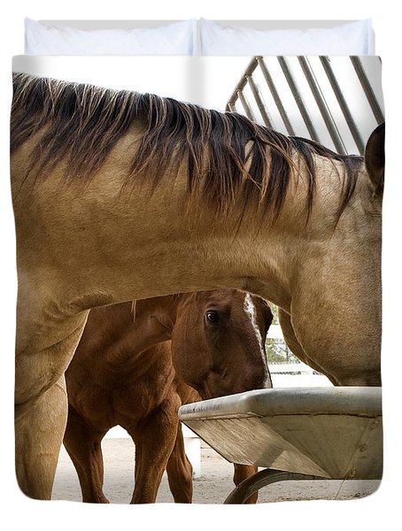 Duvet Cover featuring the photograph Peeking Pony by Lorraine Devon Wilke