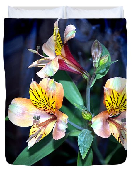 Peruvian Lily In My Garden Duvet Cover