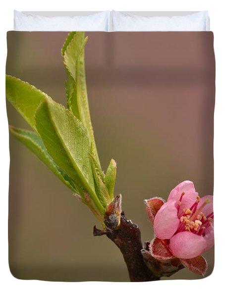 Petite Peach Duvet Cover
