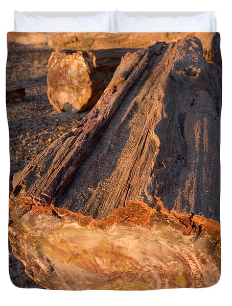 Petrified Forest Duvet Cover