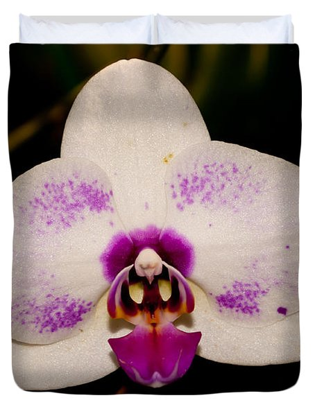 Duvet Cover featuring the photograph Phalaenopsis White Orchid by Tikvah's Hope