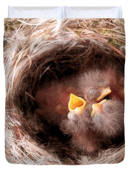 Phoebe Babies In Nest Duvet Cover by Angie Rea
