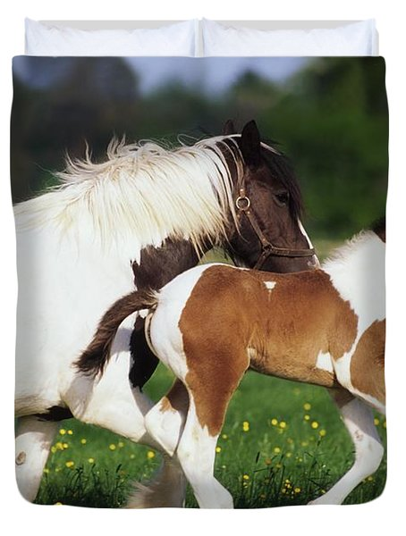Piebald Mare And Foal Duvet Cover