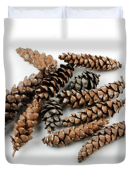 Pine Cones Duvet Cover by Photo Researchers, Inc.