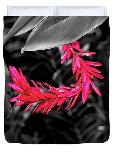 Duvet Cover featuring the photograph Pink Curve by Rachel Cohen