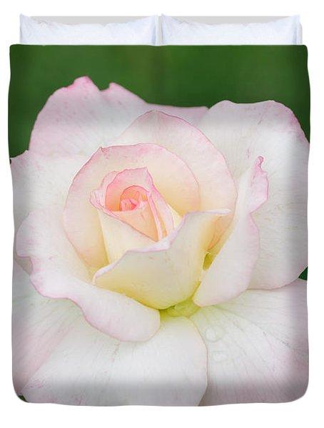 Pink Edge White Rose Duvet Cover by Atiketta Sangasaeng