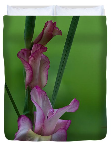 Duvet Cover featuring the photograph Pink Gladiolus by Ed Gleichman