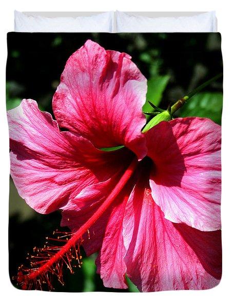 Pink Hibiscus2 Duvet Cover by Karen Harrison