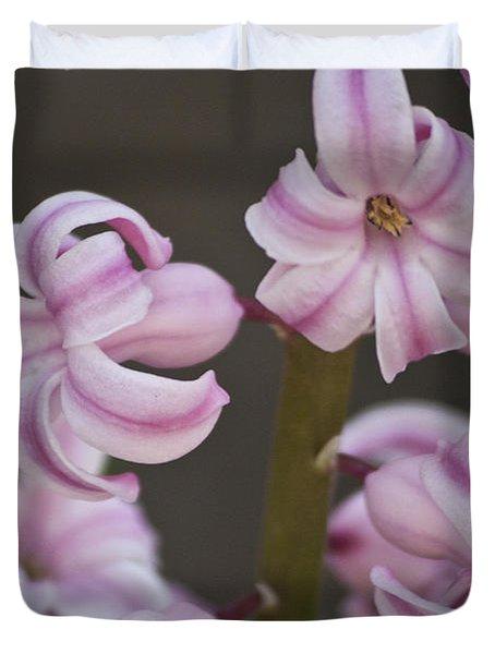 Pink Hyacinth 2 Duvet Cover by Teresa Mucha