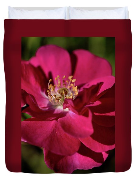 Duvet Cover featuring the photograph Pink Of Rose by Joy Watson
