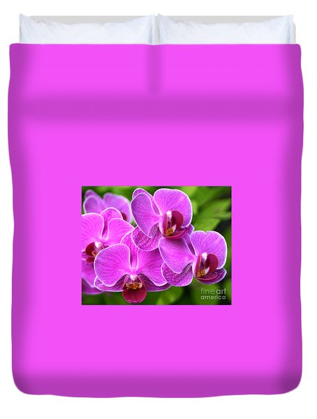 Pink Orchids B Duvet Cover by Cindy Lee Longhini