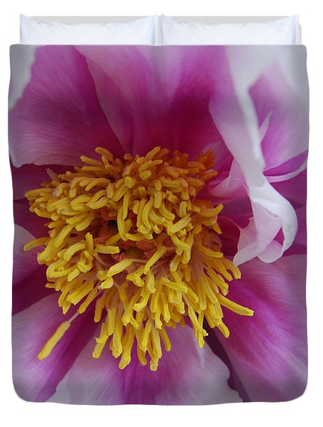 Duvet Cover featuring the photograph Pink Peony by Eva Kaufman