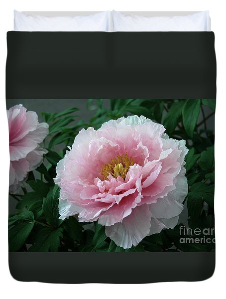 Pink Peony Flowers Series 2 Duvet Cover
