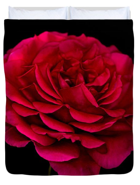 Duvet Cover featuring the photograph Pink Rose by Steve Purnell
