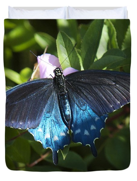 Duvet Cover featuring the photograph Pipevine Swallowtail Din003 by Gerry Gantt