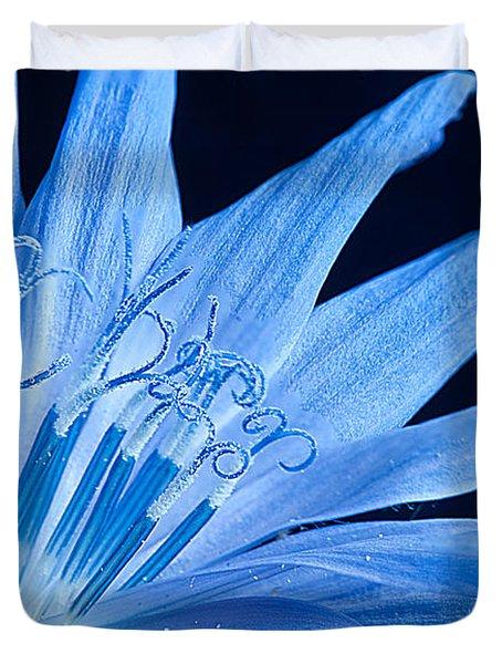 Duvet Cover featuring the photograph Pistil's Of Chicory by Randall Branham