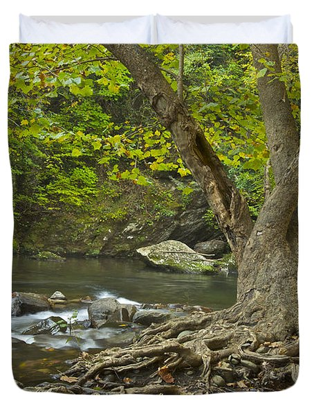 Planted By The Rivers Of Water Duvet Cover by Michael Peychich