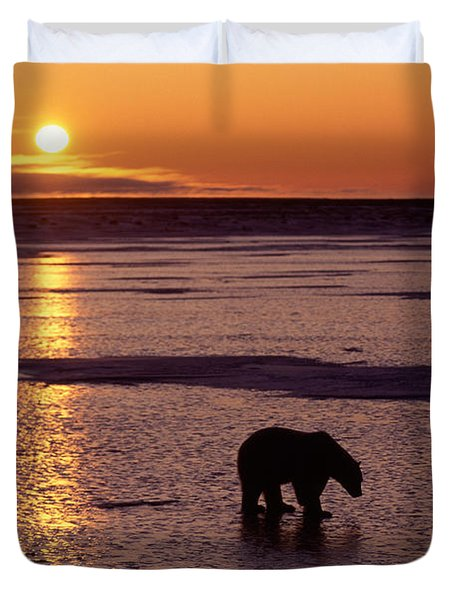 Polar Bear At Sunset Duvet Cover by Francois Gohier and Photo Researchers