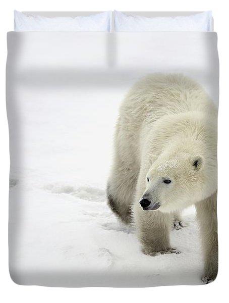 Polar Bear Walking Duvet Cover by Richard Wear