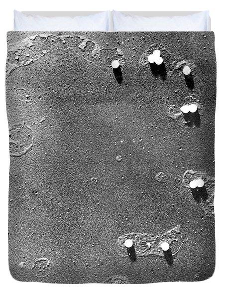 Poliovirus, Sem Duvet Cover