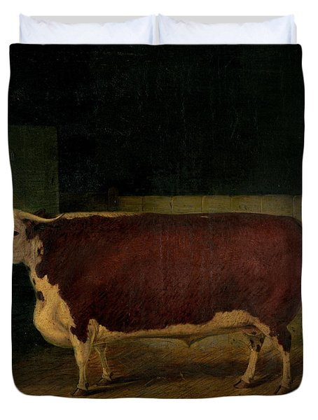 Portrait Of A Prize Hereford Steer Duvet Cover by Richard Whitford