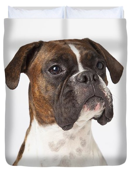 Portrait Of Boxer Dog On White Duvet Cover by LJM Photo