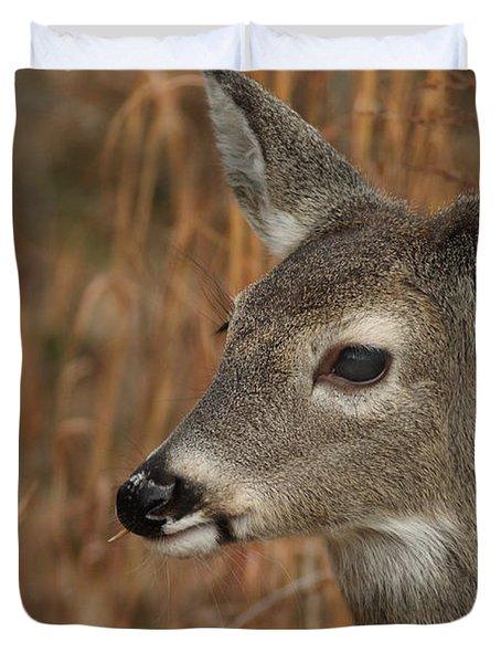 Portrait Of  Browsing Deer Duvet Cover